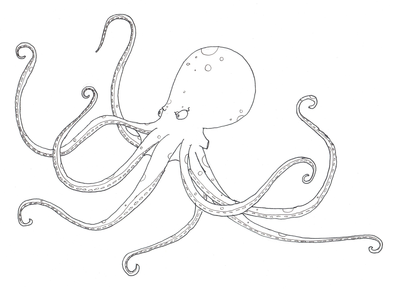 Octopus peteglantingdraws posted pooptronica
