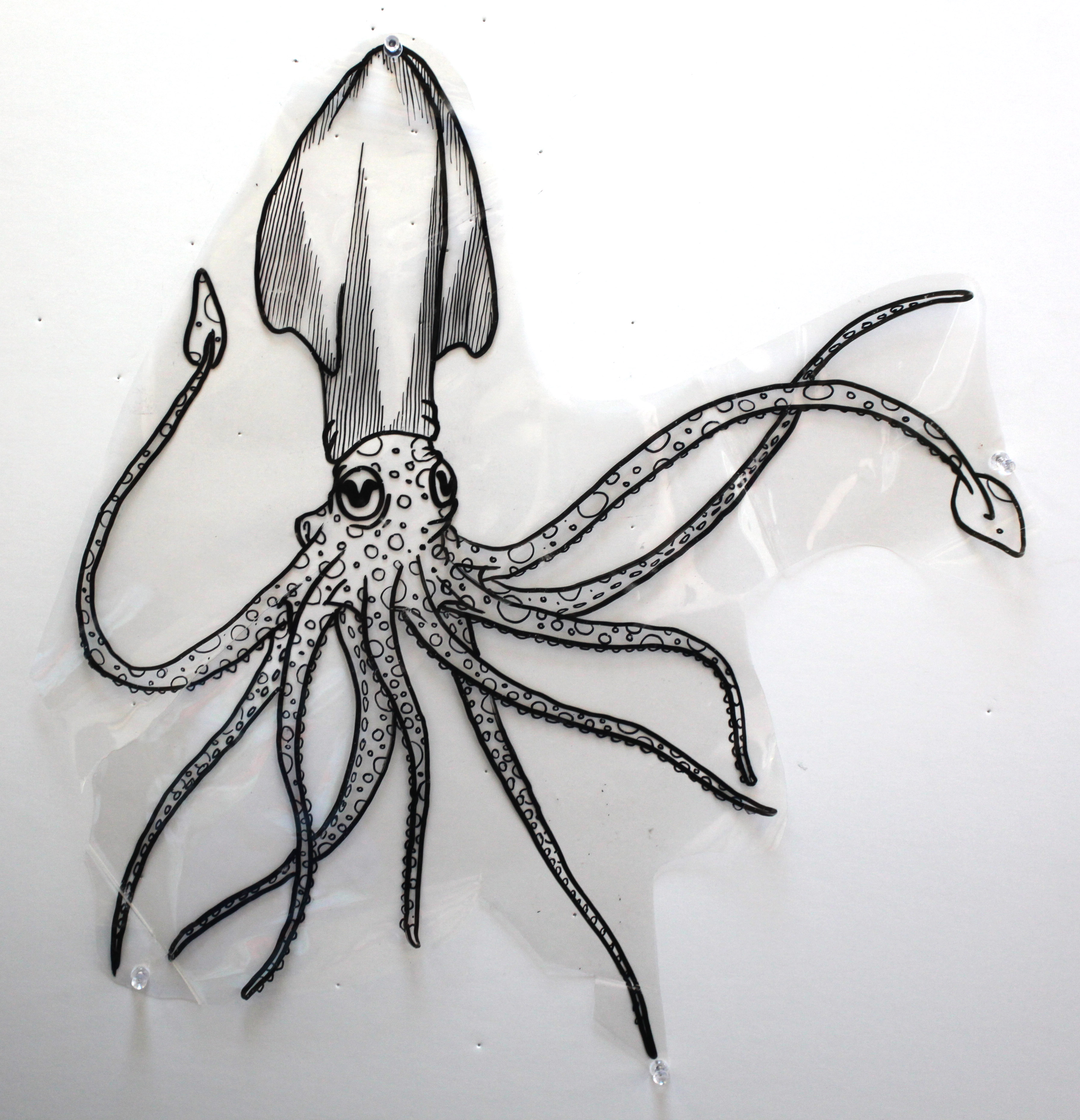 Giant Octopus Drawings Octopus