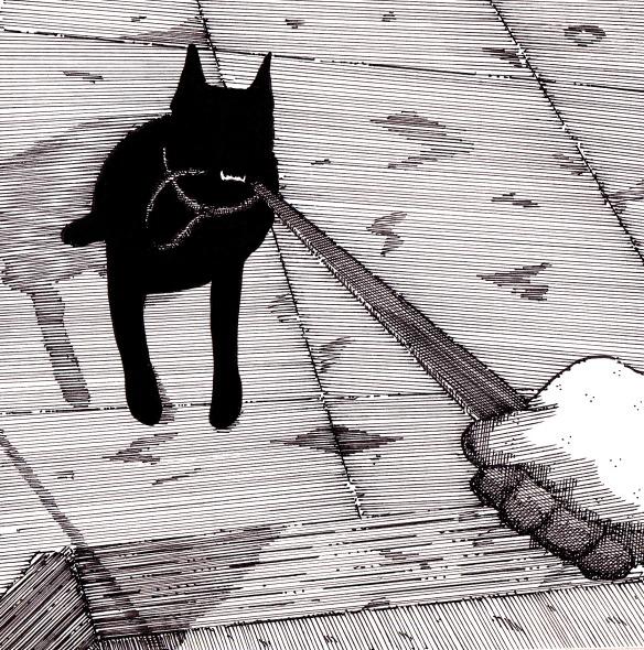 sookieand the leash