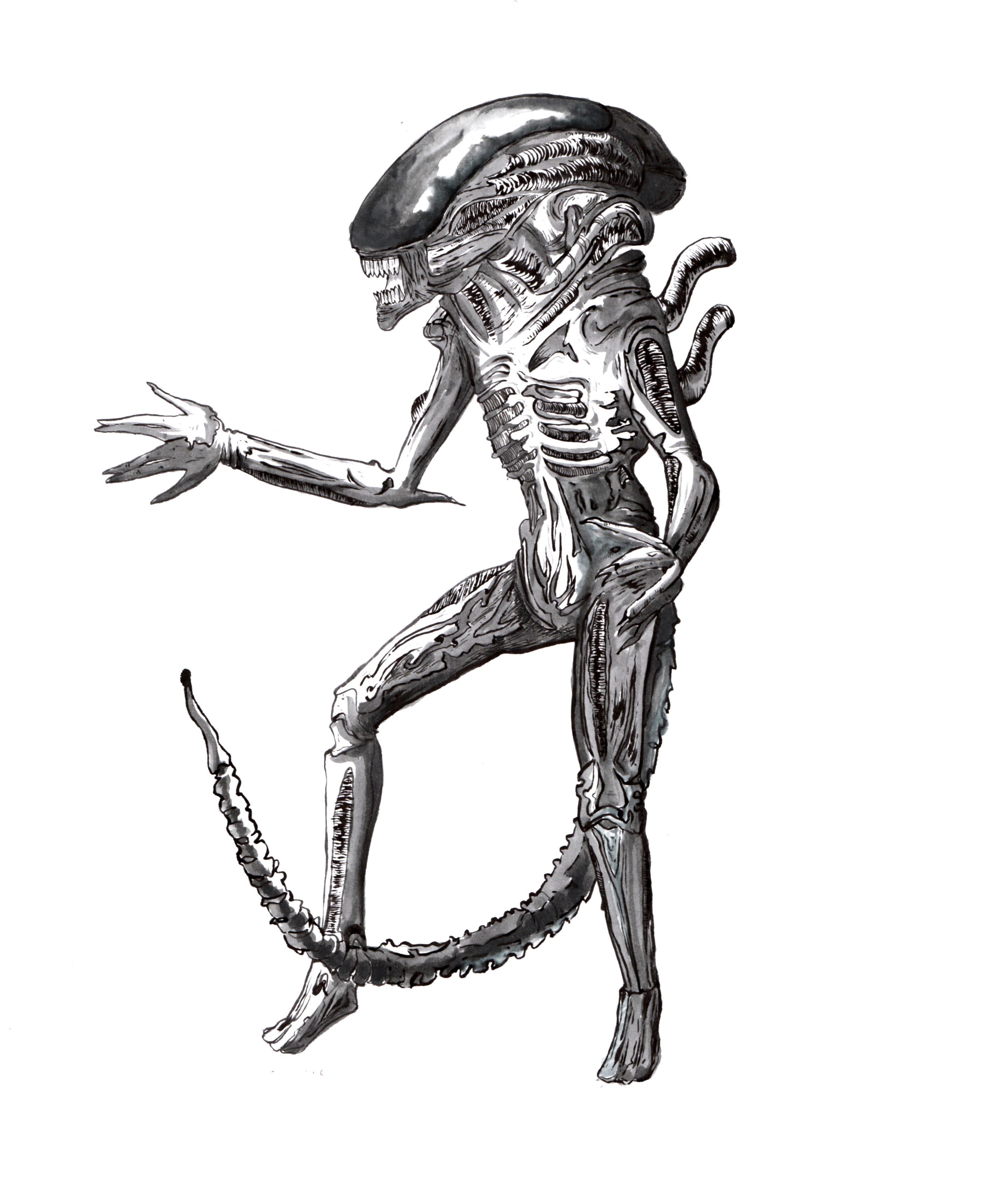 Xenomorph Alien